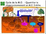 cycle de la m o q uantifier le r approvisionnement en m o fra che