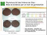 phytotoxicit des liti res de filao mise en vidence par un test de germination