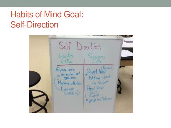 Habits of Mind Goal: