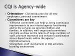 cqi is agency wide