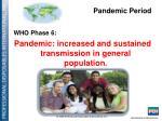 pandemic period