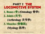 part i the locomotive system