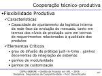 coopera o t cnico produtiva1