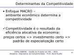 determinantes da competitividade2