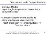 determinantes da competitividade3