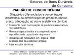 setores de bens dur veis de consumo1