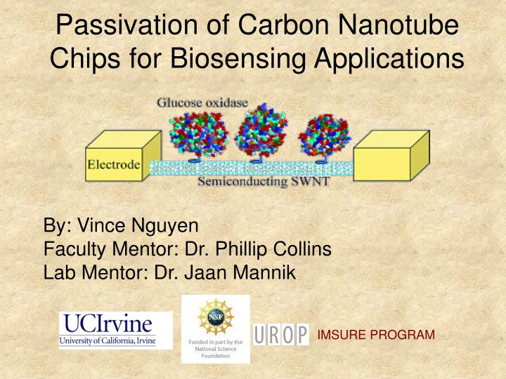 passivation of carbon nanotube chips for biosensing applications n.