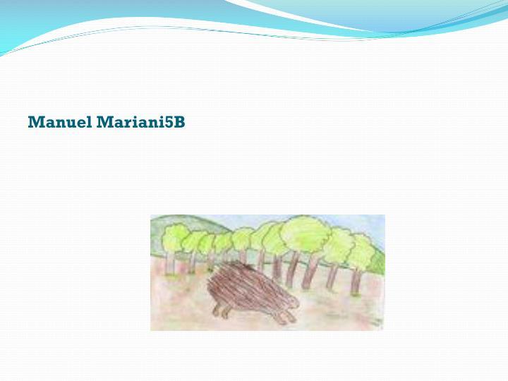 Manuel Mariani5B