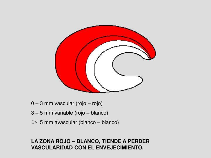 0 – 3 mm vascular (rojo – rojo)