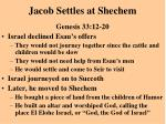 jacob settles at shechem