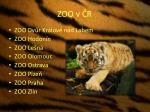 zoo v r