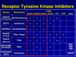 receptor tyrosine kinase inhibitors