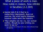 what a piece of work is man how noble in reason how infinite in faculties 2 2 304