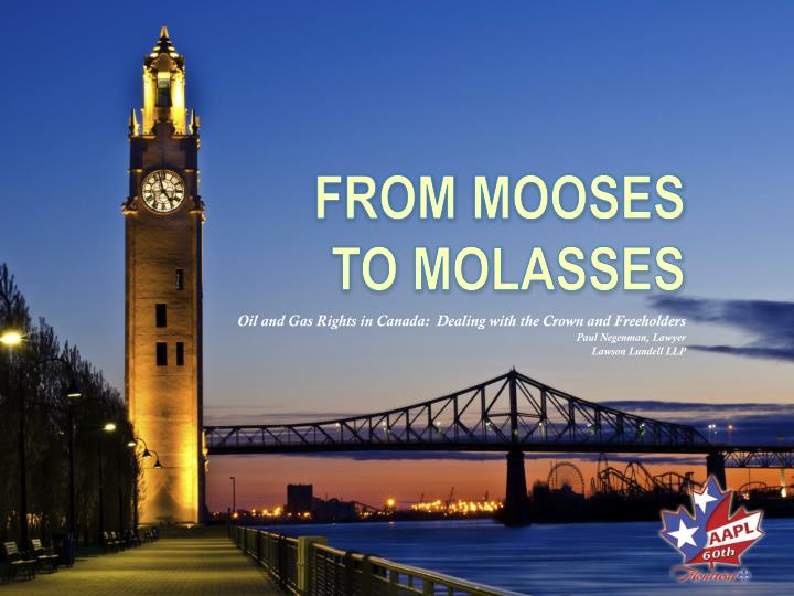 from mooses to molasses n.