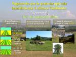 pagamento per le pratiche agricole benefiche per il clima e l ambiente greening