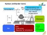 karbon milliarder tonn