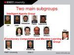 two main subgroups