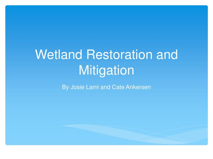 wetland restoration and mitigation n.