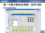 dcp 3001