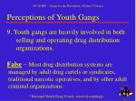 perceptions of youth gangs8