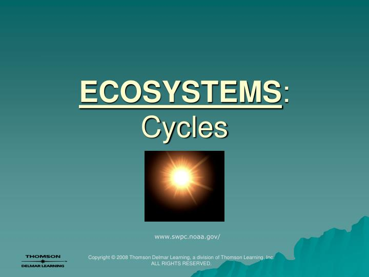ecosystems cycles n.