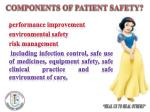 components of patient safety