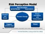risk perception model