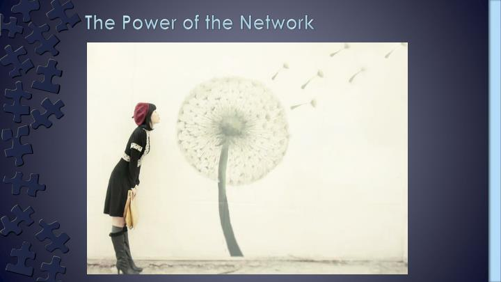 The Power of the Network