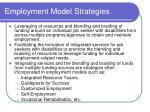 employment model strategies