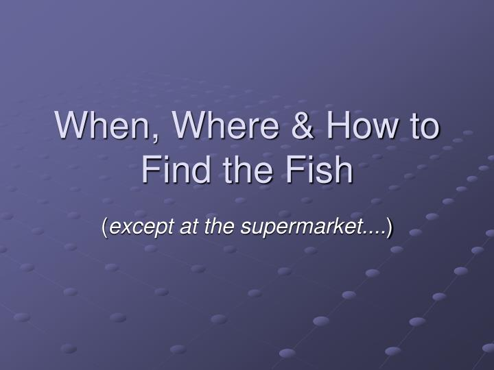when where how to find the fish n.
