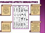 phragmites affects hieroglyphics