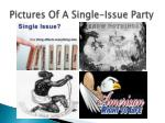 pictures of a single issue party