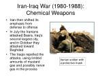iran iraq war 1980 1988 chemical weapons