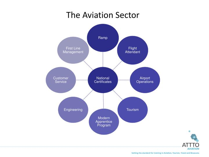 The Aviation Sector