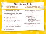 sm lingual arch advantages disadvantages