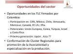 oportunidades del sector