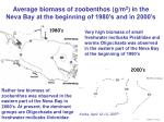 average biomass of zoobenthos g m 2 in the neva bay at the beginning of 1980 s and in 2000 s