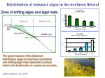 distribution of nuisance algae in the northern littoral