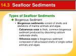 14 3 seafloor sediments1