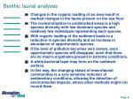 benthic faunal analyses
