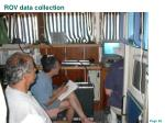 rov data collection