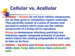 cellular vs acellular