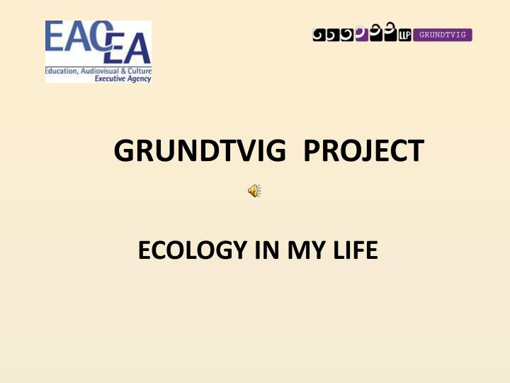 grundtvig project n.