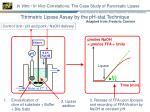 in vitro in vivo correlations the case study of pancreatic lipase