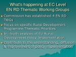 what s happening at ec level en rd thematic working groups