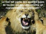 le lion fait partie des quatres types de fauves qui peuvent mettre un rugissement assourdissant