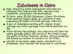 zabaleens in cairo