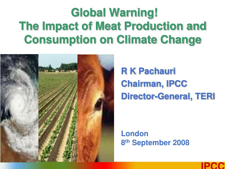global warning the impact of meat production and consumption on climate change n.