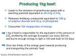 producing 1kg beef