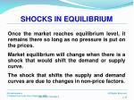 shocks in equilibrium